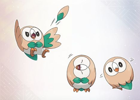 The Grass type Pokemon Rowlet