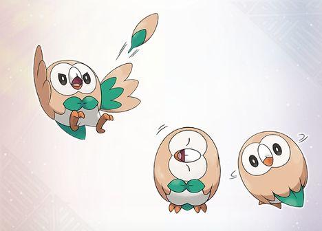The Grass type Pokemon Rowlet