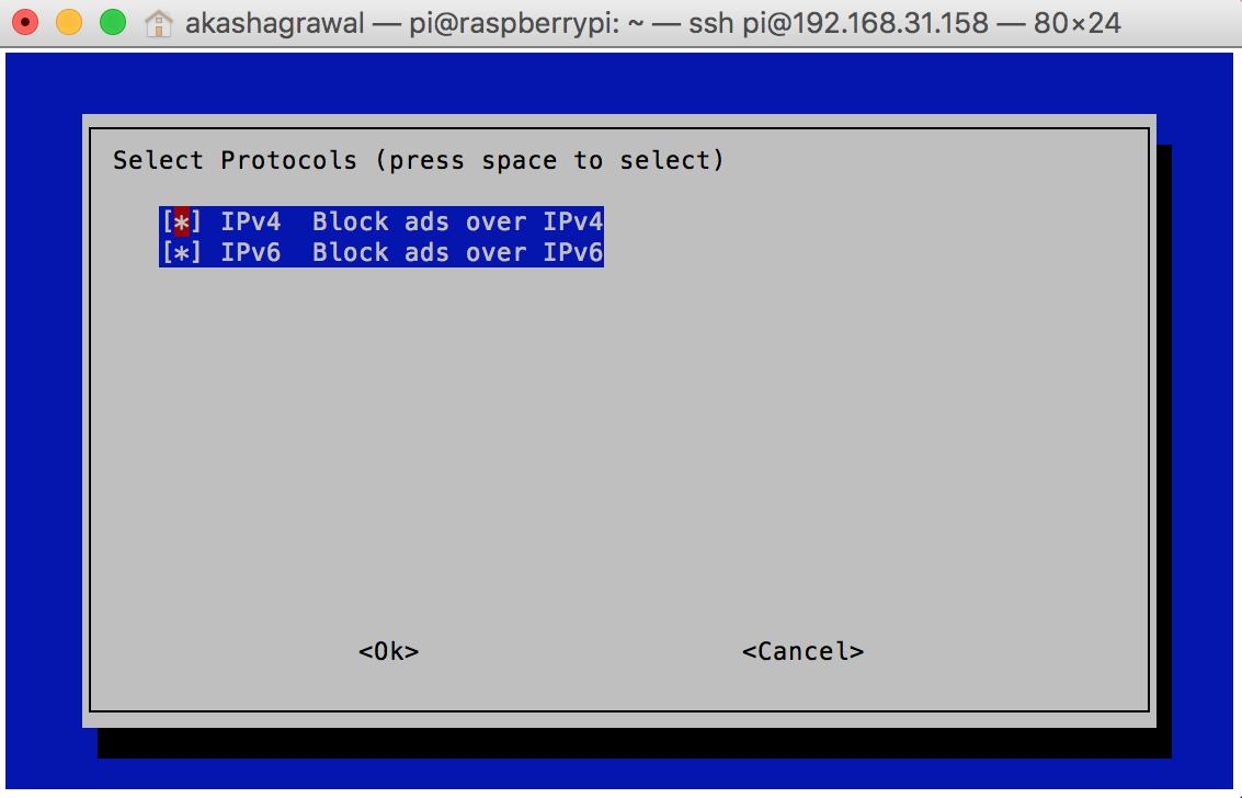 IPv4 Config